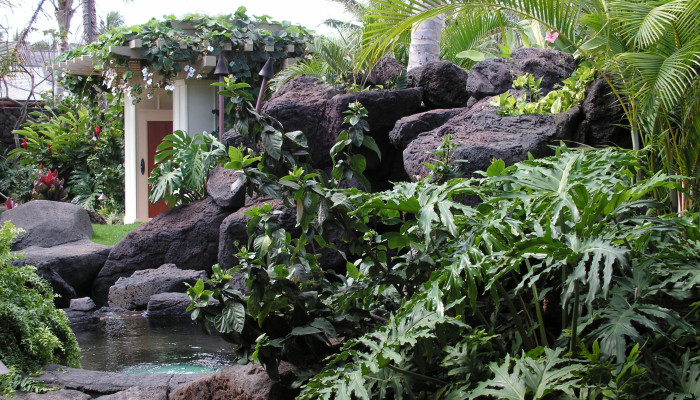 Rock gardens and water features in Hawaii